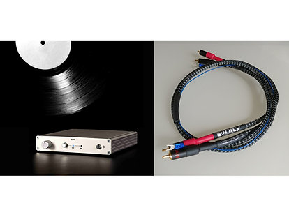York Phono Preamp + Unity Cancer Fighter™ SL Phono Cable
