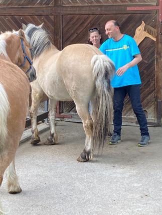 Auch Michele füttert die Pferde