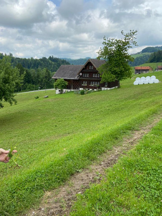 Haus im Neckertal
