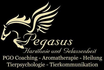 Pegasus%20-%20HUG%201_edited.jpg