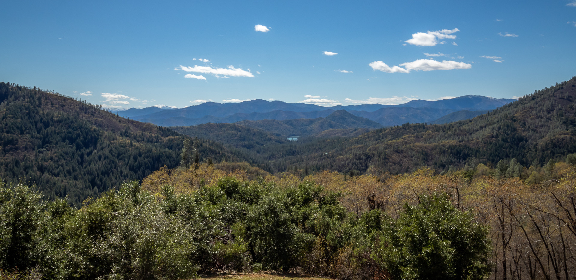 20326 Top of the Hill Trail_238.jpg