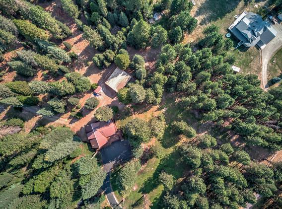 2900 Spring Creek Rd ext_011.jpg