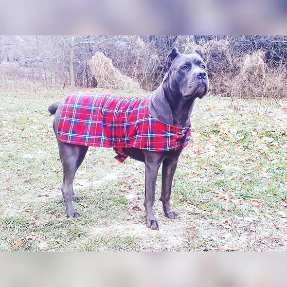 Dog Winter Fleece Jacket Red Plaid