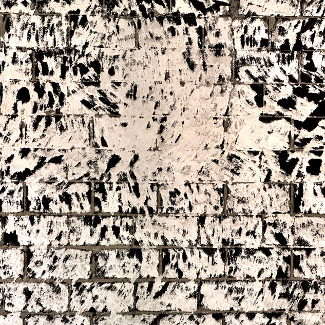 Asse.  Lupulus.  Looks like a work of Simon Hantai.  A Hungarian artist who lived and worked mostly in Paris.  Les noirs du blanc. Les blancs du noir.  I proposed the client to leave it this way. He disagreed.
