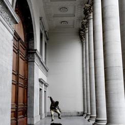In de Volderstraat in Gent vindt u de toegang tot de plechtstatige aula van de rijksuniversiteit. In Gent zijn ze nog altijd fier dat we in 1819 van koning Willem de toestemming kregen om een eigen universiteit op te richten. Dat wil zeggen: Nederland betaalde de professoren, Gent investeerde in gebouwen.   In 1826 kon architect Louis Roelandt de bouwheer tevreden bijstaan bij de oplevering.  Eén keer per jaar gaat die monumentale poort open voor de inauguratie van het nieuwe academiejaar.  De rest van het jaar is het de speelplaats voor jongeren die er hun kunsten tonen aan de voorbijgangers die drie treden lager zicht hebben op dit kleine nutteloze eiland in een volle stad.  Hij heet Stan en zoekt zijn weg door de universiteit van het leven.