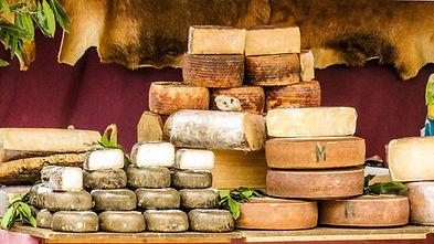 cheese-tulipdaytours-blog_1200x1200.jpg