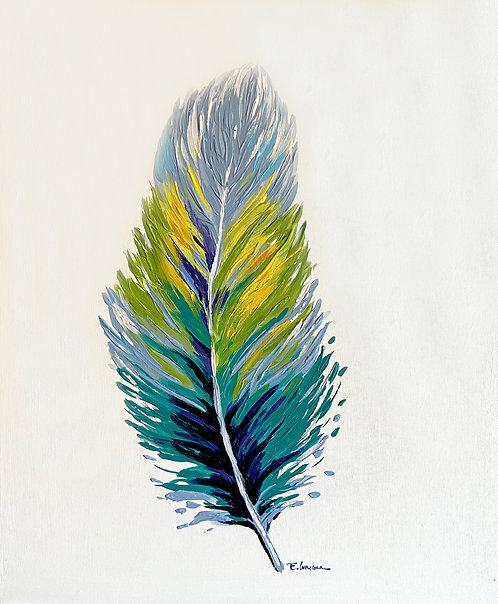 Pluma I (60 x 50 cms)