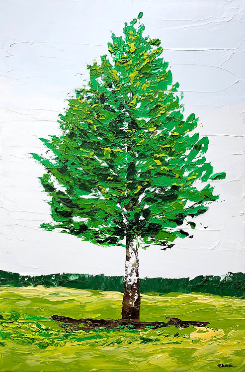 Abedul (60 x 40 cms)