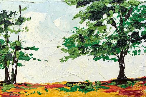 Colores veraniegos (20 x 30 cms)