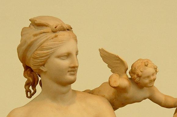 Lady Venus Love + Romance Angel Reading