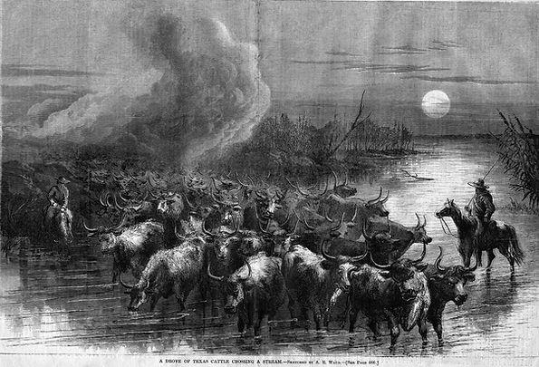 1867-10-19-Harpers Weekly-PP665-Texas Ca