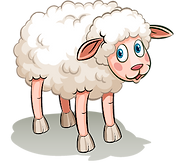 shutterstock_330221483Sheep02.png