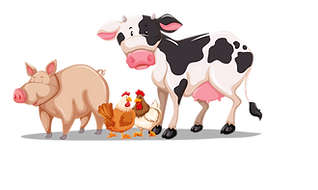Playbarn menu animals -01.png