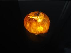 onion      タマネギ