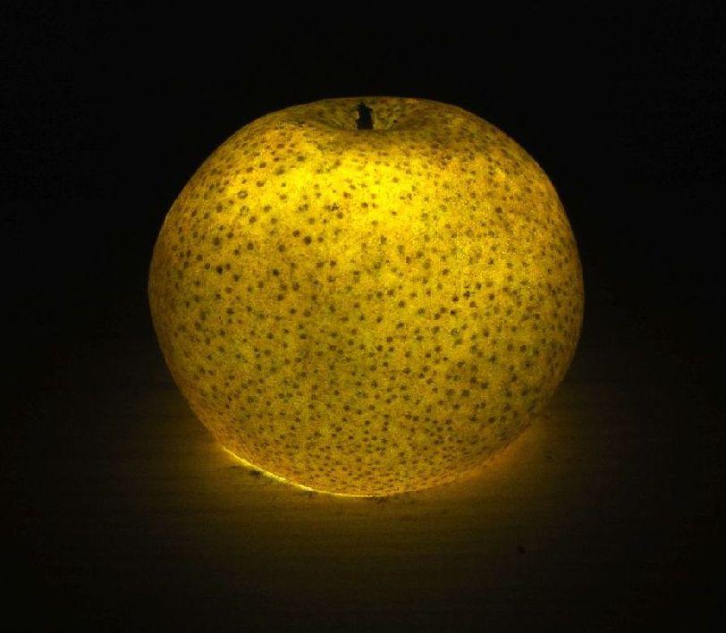 pear     ナシ