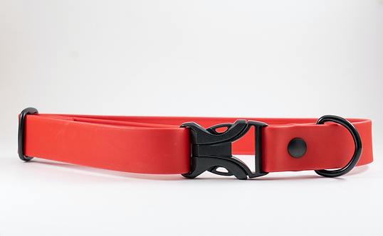 "1"" Red Buckle Adventure Collar"