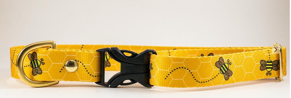 """1"""" Busy Bee Webbing Dog Collar"""