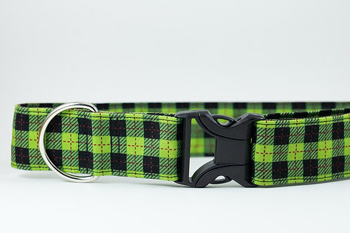 Green Plaid Collar