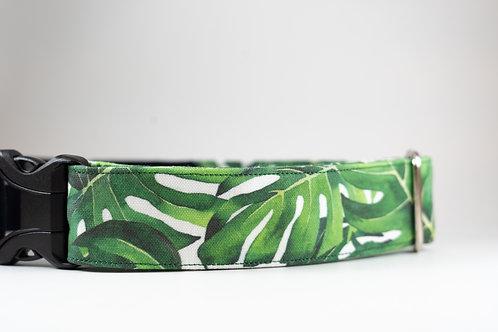 Monstera Leaf Eco Canvas Collar