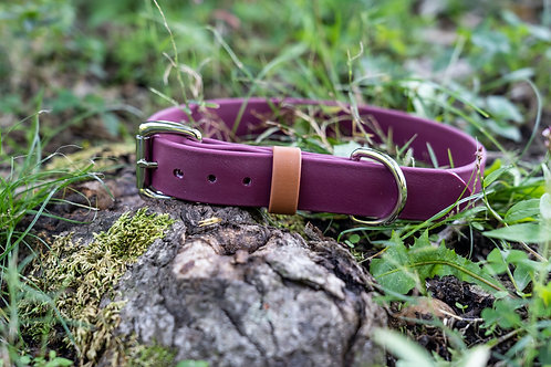 "1"" Adventure Series Maroon Biothane Collar"