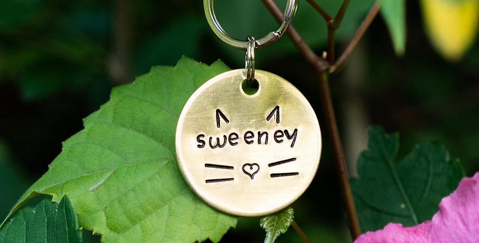 Cat Whiskers Tag
