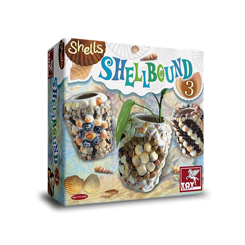 Shellbound 3 terracotta pot with shells for the ages 7 and above