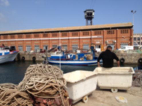 Barceloneta fish market