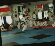 4th Dan test, 2001 (5 mos pregnant - hence the chestguard), loved it!