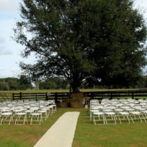 wedding wilson.jpg