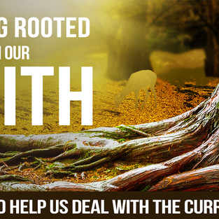 What do our lives look like when they are rooted in faith?