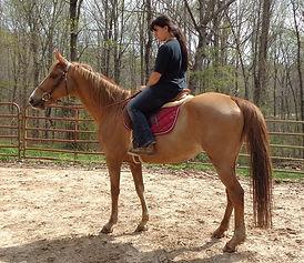 Elle under saddle.jpg