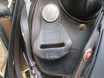 big horn tag.jpg
