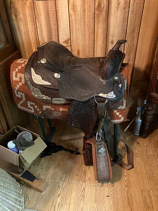 big saddle.jpg