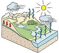 cycle de l'eau SED 2015.jpg