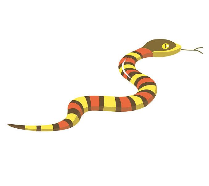 serpent 2019.jpg