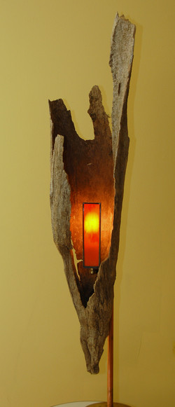 Cypress Knee Sconce