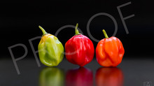 Photography for food packaging