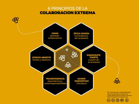 """Seis principios de la """"Colaboración Extrema"""""""