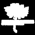 Logo Nuevas Fronteras-03.png