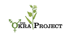 theokraproject-01.png