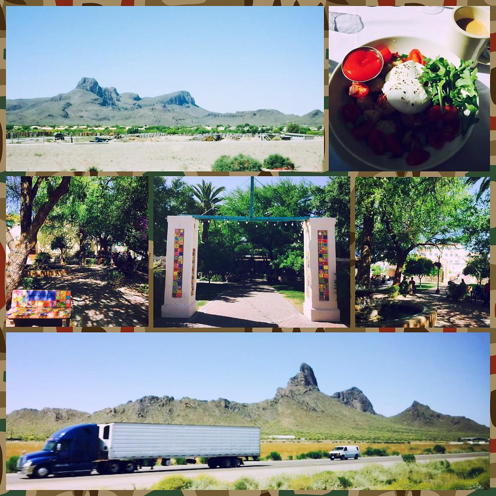 Tucson, AZ (4.12.2015)-2.JPG