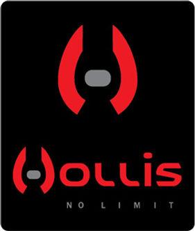 Hollis_Primary.jpg
