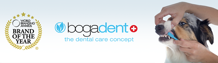 bogadent_banner_interno_cao2.png