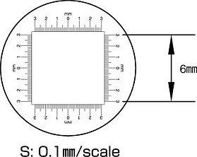 S Scale.jpg