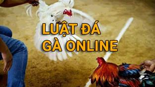 Chết Vì Không Hiểu Rõ Về Luật Đá Gà Online