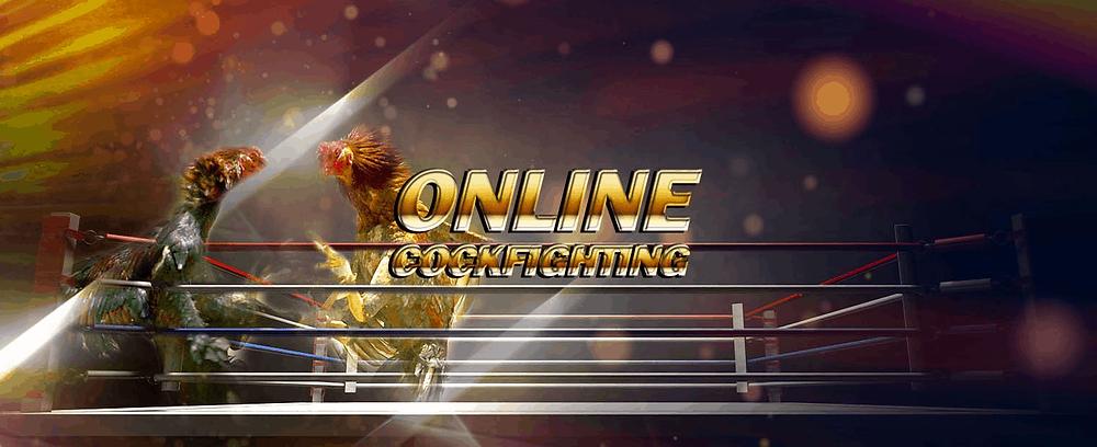 chơi đá gà online