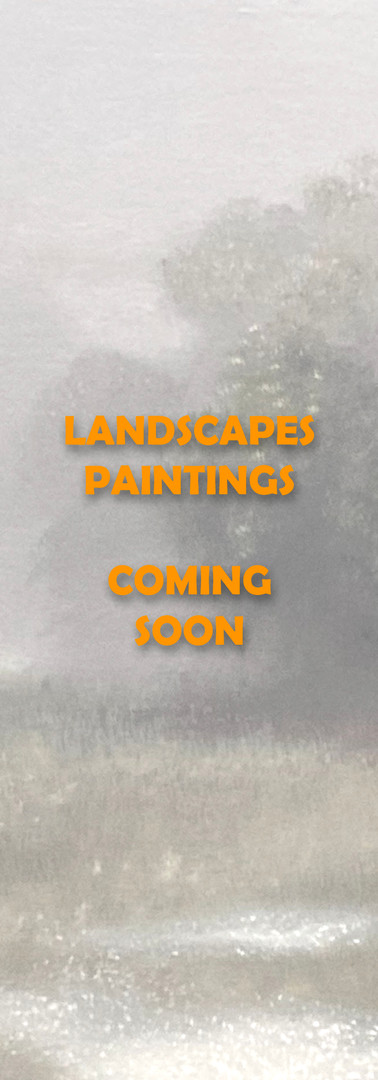 Landscape Paintings Coming Soon.jpg