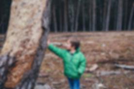 Menino encostado a uma árvore