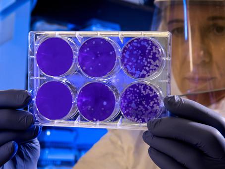 The Coronavirus Files: A Discussion with WHO Advisor, Prof John Mackenzie