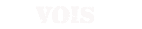 VOIS Logo 1.png